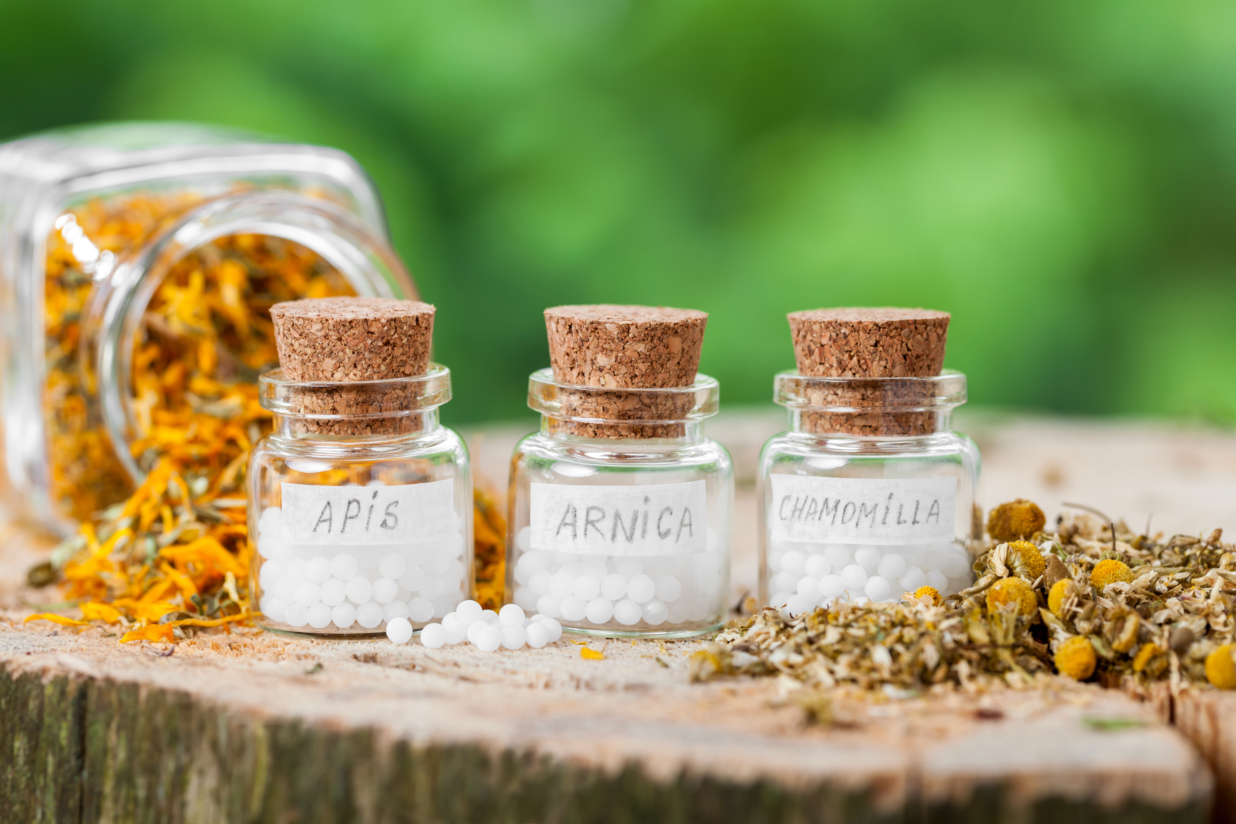 Homöopathie Praxis Steiniger